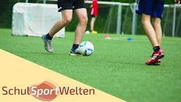Embedded thumbnail for NFV-Junior-Coach