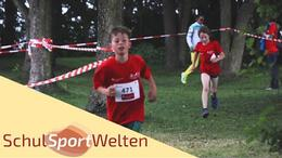 Embedded thumbnail for Triathlon am Steinhuder Meer