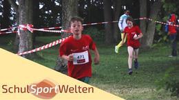 Embedded thumbnail for Triathlon am Steinhuder Meer